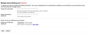 Google accounts manage domain page